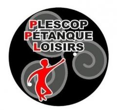 logo PPL.jpg